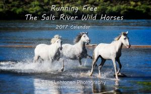 2017 Running Free - The Salt River Wild Horses Calendar